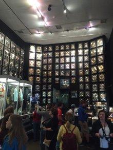 12 graceland museum